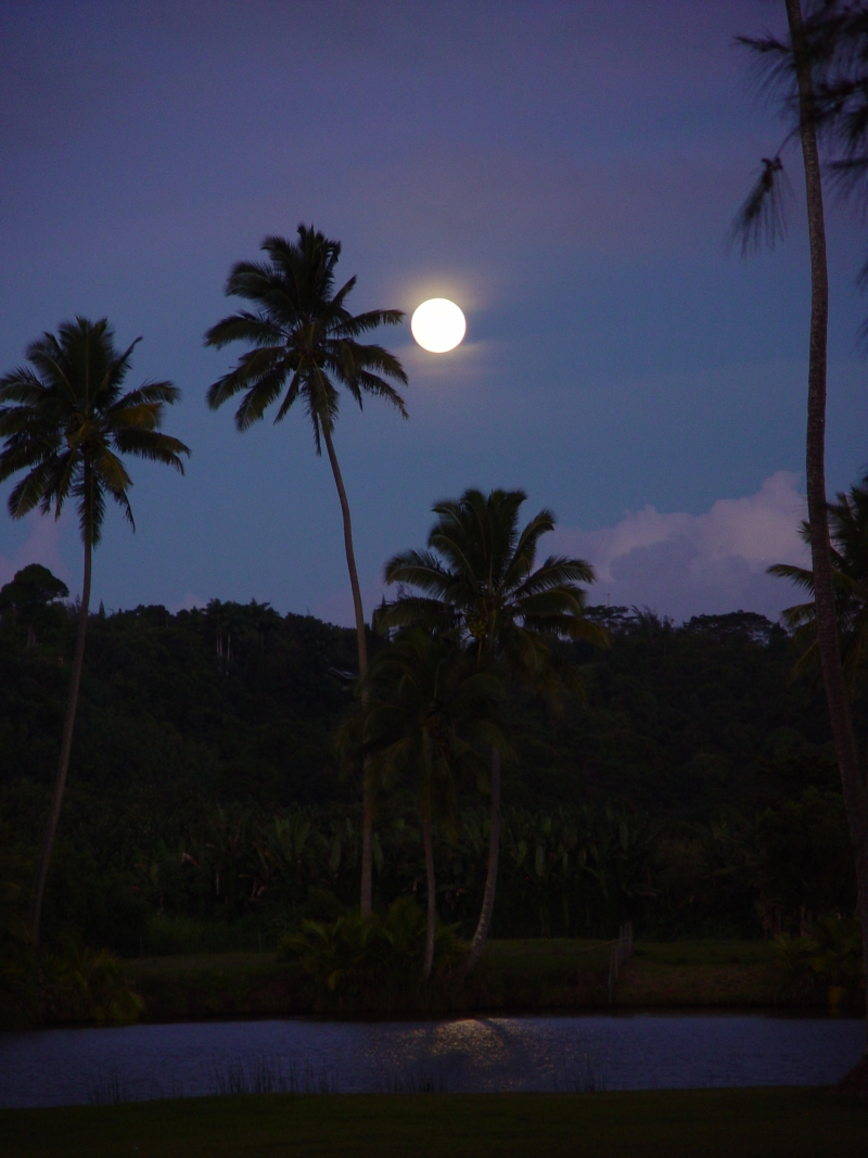 Full moon rise by the Hanalei river