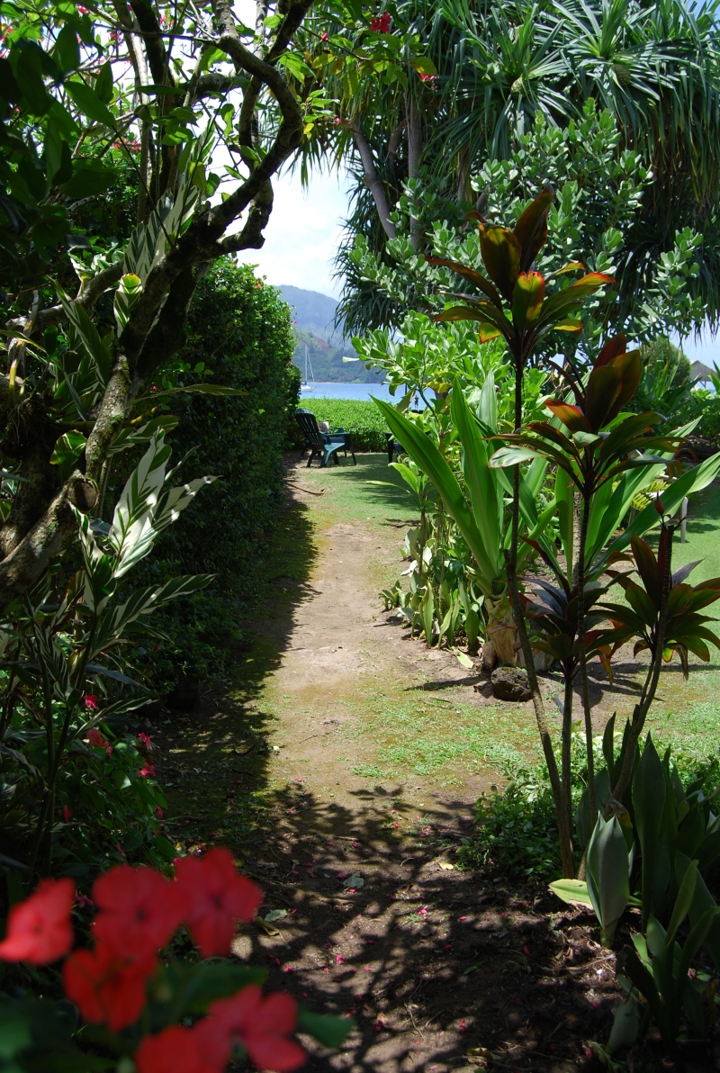 Your private path, a mere 70 strides to Hanalei Bay!