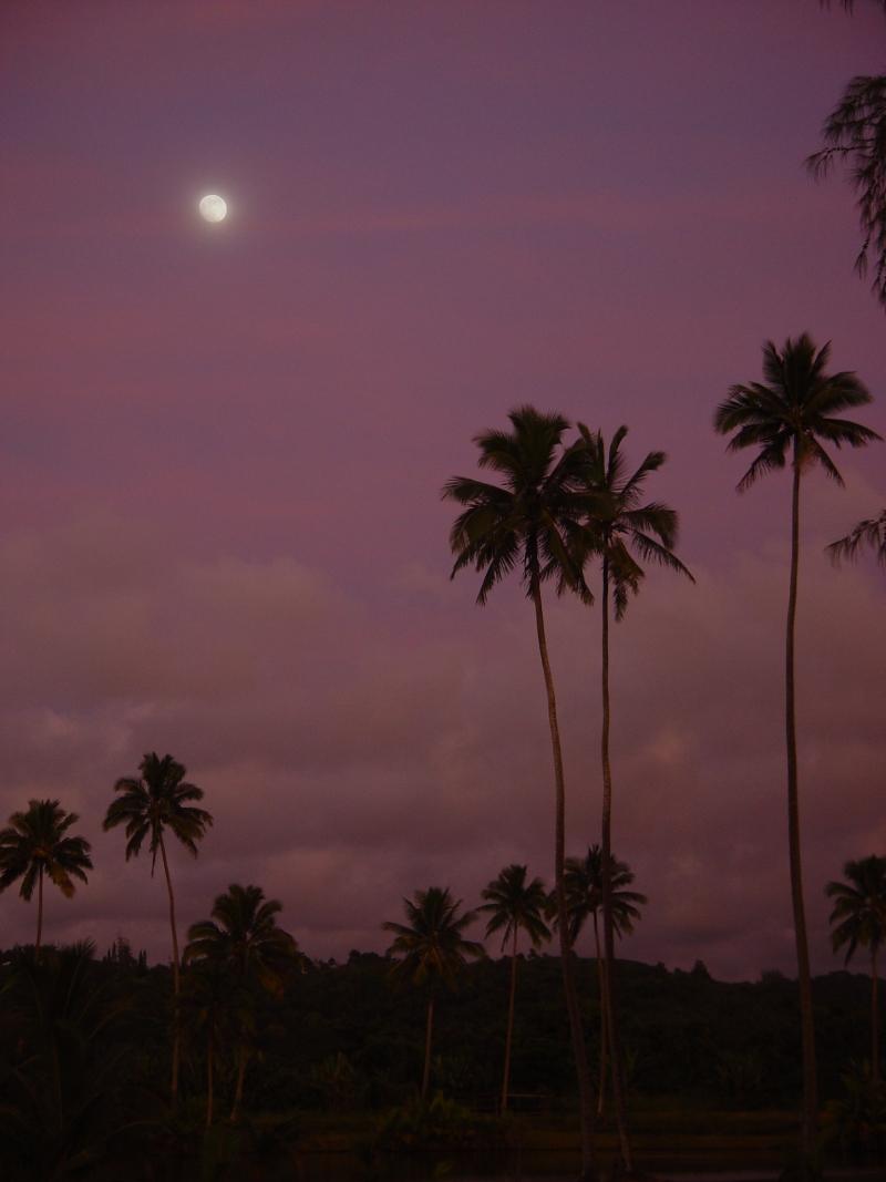 Moonrise across the street